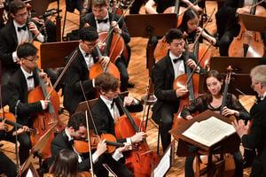 FY18 BPYO Tour - Rudolfinum cello section (credit - Paul Marotta)